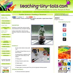 Toddler Science: Make a Soda Bottle Terrarium with your child. Great Green Kids Science Activity!