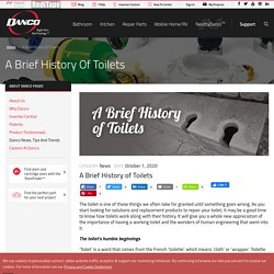 Toilets and Dual Flush Valve - A Brief History
