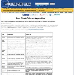 Best Shade-Tolerant Vegetables - Organic Gardening