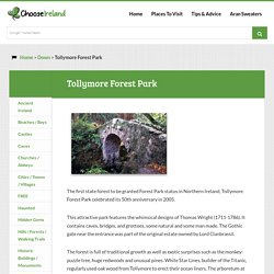 Tollymore Forest Park - Down - Choose Ireland