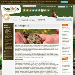 Tom&Co - La tortue (d'eau)