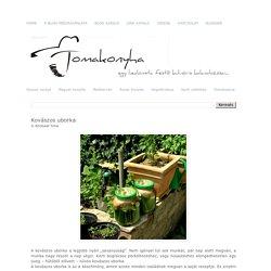Tomakonyha: Kovászos uborka