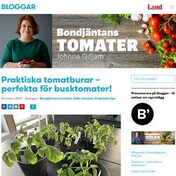 Praktiska tomatburar - perfekta för busktomater!