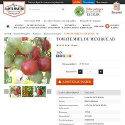 Tomate cerise Miel du Mexique