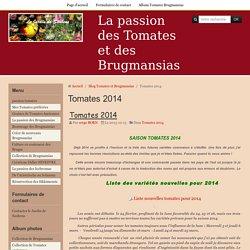 Tomates 2014