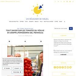 Tout savoir sur les tomates du Vésuve en grappe (pomodorini del piennolo)