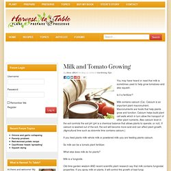 Milk and Tomato Growing | Harvest to Table