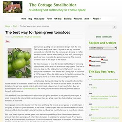 The Cottage Smallholder » The best way to ripen green tomatoes