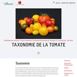 Tomatosphere - Tomatosphère