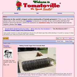 Making Tomato Cages from Concrete Mesh - Tomatoville® Gardening Forums