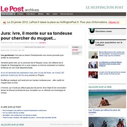 Jura: ivre, il monte sur sa tondeuse pour chercher du muguet... - SATOFE sur LePost.fr (15:18)