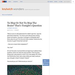 To Map Or Not To Map The Brain? That's Tonight's Question : Krulwich Wonders...