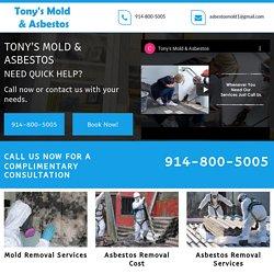 Anthony's Asbestos Mold Removal service Near Me The Bronx NY