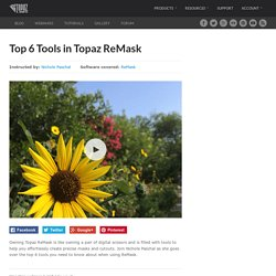 Top 6 Tools in Topaz ReMask - Topaz Labs Blog