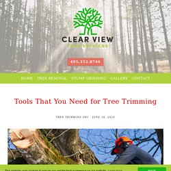 Tools That You Need for Tree Trimming
