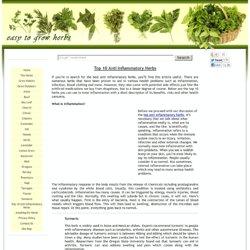 Top 10 Anti Inflammatory Herbs