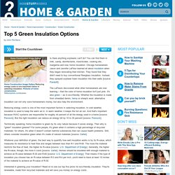 Top 5 Green Insulation Options