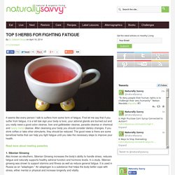 Top 5 Herbs for Fighting Fatigue