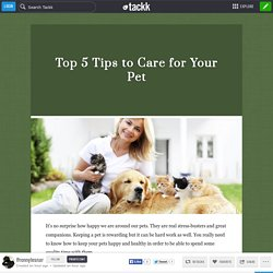 Top 5 Tips to Care for Your Pet