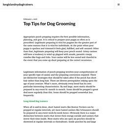 Top Tips for Dog Grooming – longislandnydogtrainers