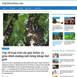 Top 10 loại trái cây quý hiếm và giàu dinh dưỡng nổi tiếng khắp thế giới - Top10meohay.com
