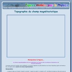 Topographie du champ magnétostatique