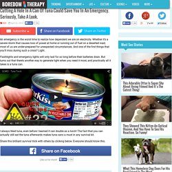 Tuna Can Torch Can Generate Light In A Case Of Emergency