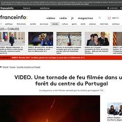 VIDEO. Une tornade de feu filmée dans une forêt du centre du Portugal