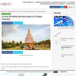 La torre de bambú que daría agua a La Guajira Colombia