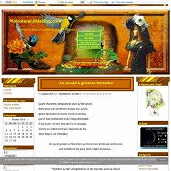 Le snood à grosses torsades - Pipiouland.eklablog.com