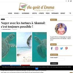 Nager avec les tortues à Akumal: c'est toujours possible !