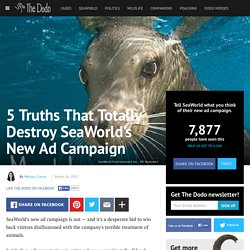 5 Truths That Totally Destroy SeaWorld's New Ad Campaign