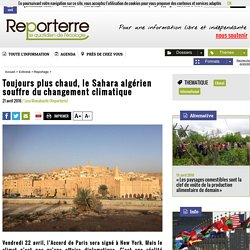Toujours plus chaud, le Sahara algérien souffre du changement climatique