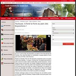 Toulouse. A fond la Foire au parc des Expositions! - Expos/Musées/Visites