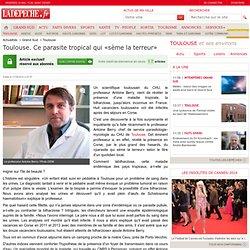 Toulouse. Ce parasite tropical qui «sème la terreur» - 17/05/2014