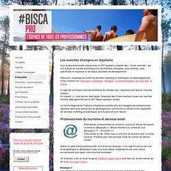 E-tourisme - Blog pro de l'office de tourisme de Biscarrosse