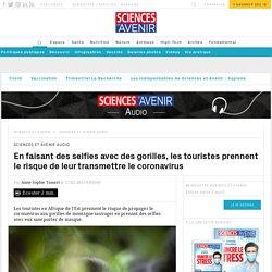 SCIENCES ET AVENIR 17/02/21 En faisant des selfies avec des gorilles, les touristes prennent le risque de leur transmettre le coronavirus