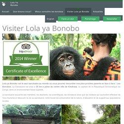 Eco-Tourisme : Visiter le sanctuaire des bonobos