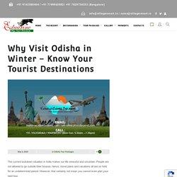 Why Visit Odisha in Winter – Know Your Tourist Destinations - Estuarine Village Resort