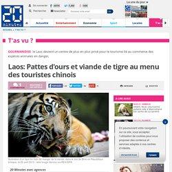 Laos: Pattes d'ours et viande de tigre au menu des touristes chinois