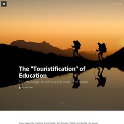 """The """"Touristification"""" of Education"""