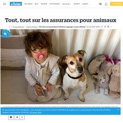 Tout, tout sur les assurances pour animaux