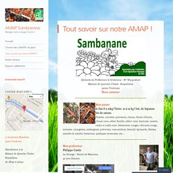Tout savoir sur notre AMAP !