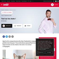 FRANCE INTER 17/09/18 LA TETE AU CARRE - Tout sur les chats !