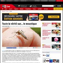 Toute la vérité sur... le moustique