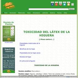 Toxicidad de la higuera