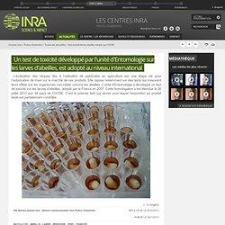 INRA 28/11/13 Un test de toxicité développé par l'unité d'Entomologie sur les larves d'abeilles, est adopté au niveau internatio