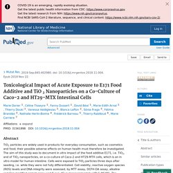 Toxicological Impact of Acute Exposure to E171 Food Additive and TiO 2 Nanoparticles on a Co-Culture of Caco-2 and HT29-MTX Intestinal Cells - PubMed