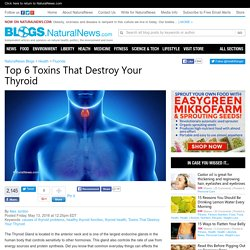 Top 6 Toxins That Destroy Your Thyroid