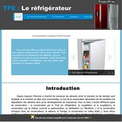 TPE - Le réfrigérateur